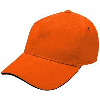 4289_colour_image_file(Orange,Black)