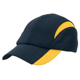 4382_colour_image_file(Navy,Gold)