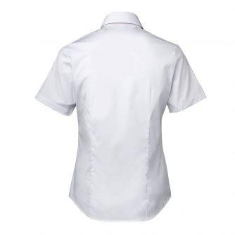 4PLUS-White-Back